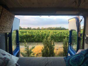 Ausblick vom Bett im Camper Van in ein Weinfeld